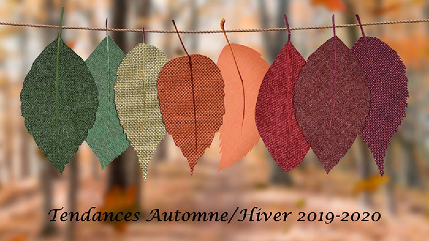 Feuilles d'automne de différents couleurs.