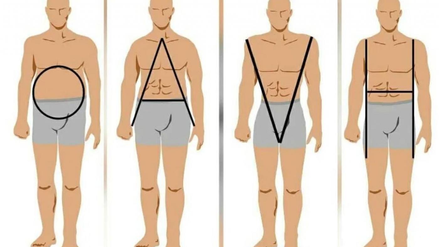 DIFFÉRENTES MORPHOLOGIES HOMMES